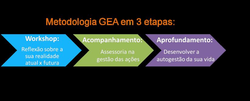 metodologia gea